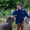 36 - brabant dierentuinen