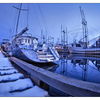 Comox Docks 2018 5 - Comox Valley