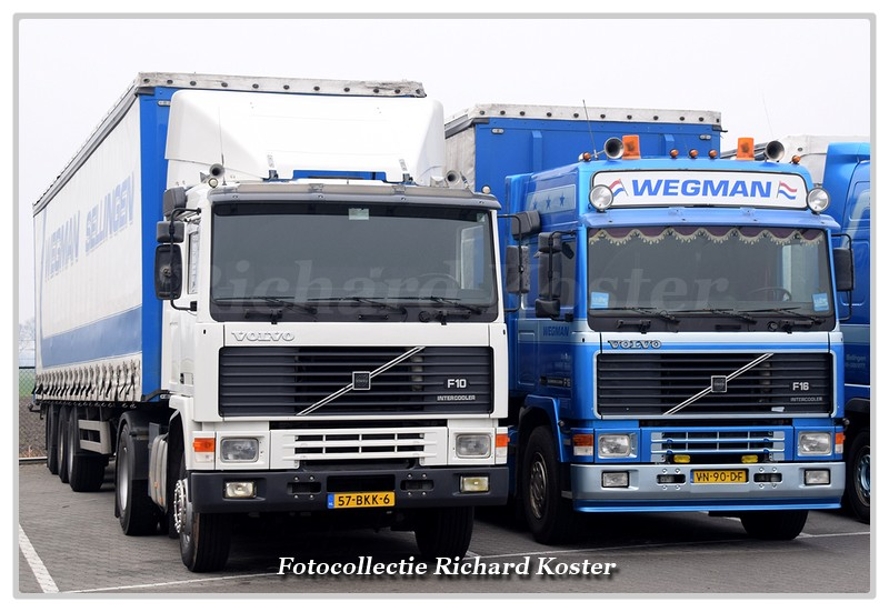 Wegman Line-up F serie's (1)-BorderMaker - Richard