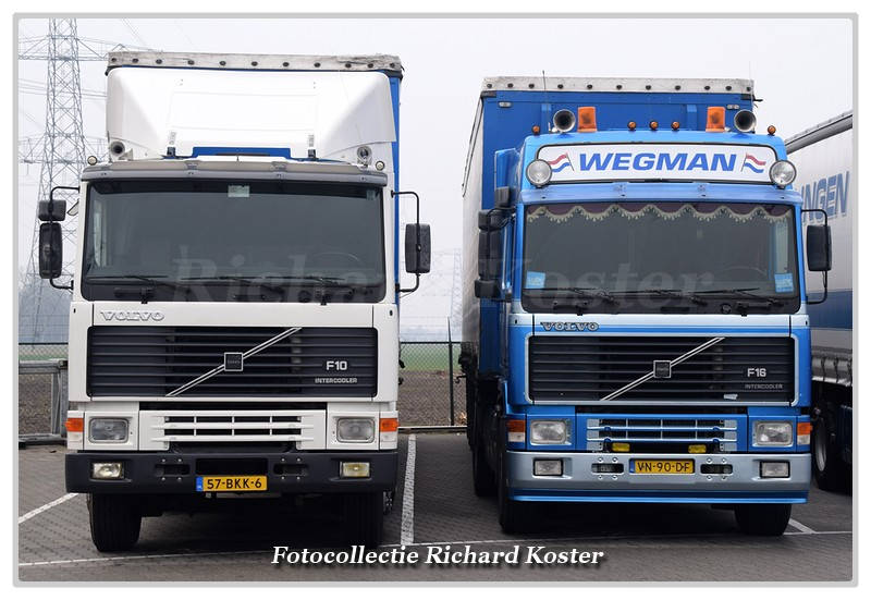 Wegman Line-up F serie's (2)-BorderMaker - Richard
