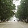 - Beijing (北京)