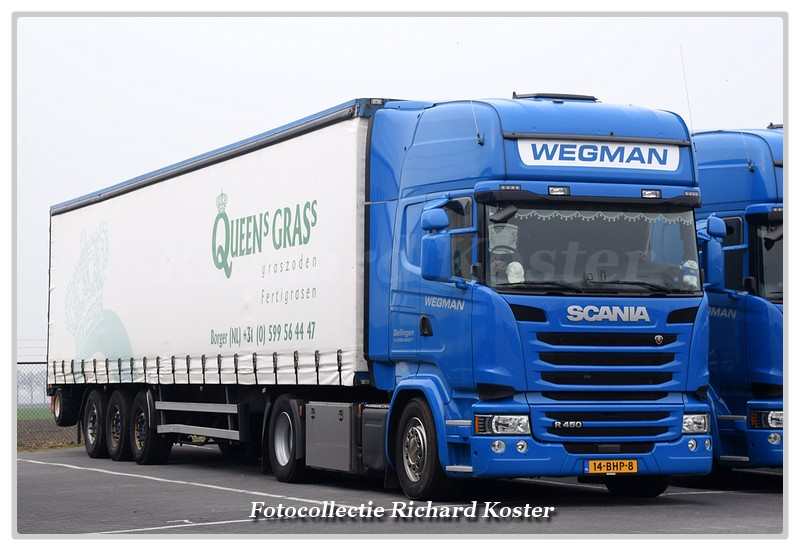 Wegman 14-BHP-8 (1)-BorderMaker - Richard