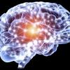 Saint Elias Cognitive - Picture Box