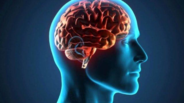 mod-alerta-650x364 http://healthyfinder.com.br/mod-alerta-brain-enhancement/