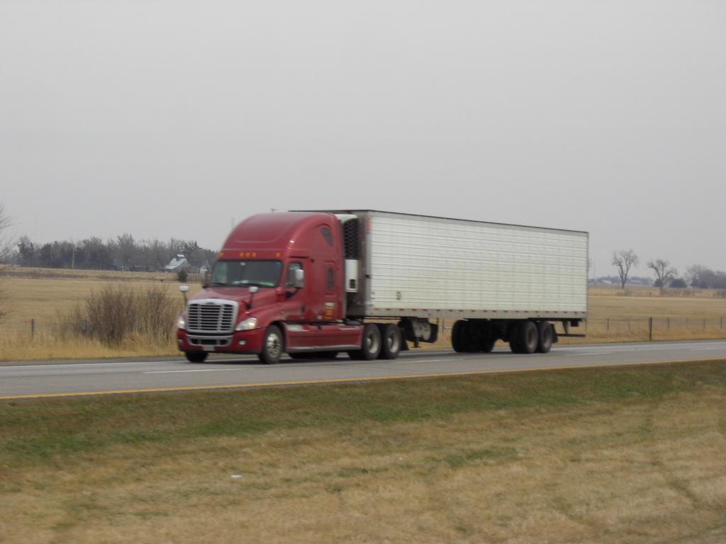 CIMG8569 - Trucks