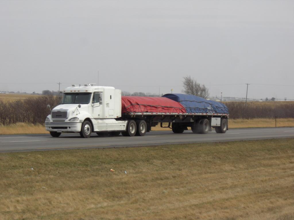 CIMG8672 - Trucks