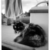 Black & White and Sepia
