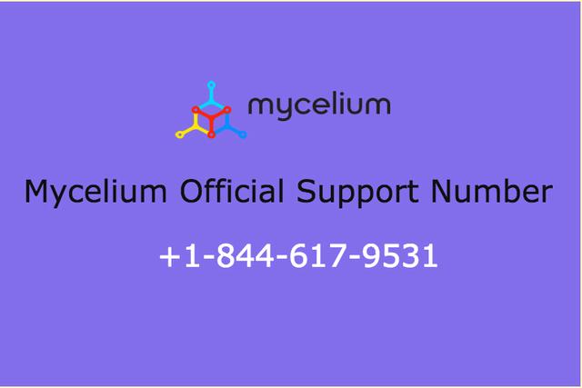 mycelium-support-number-18446179531 Picture Box