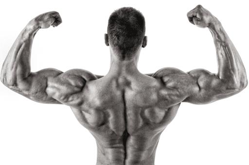 bodybuilding-benefits-1024x681 https://healthsupplementzone.com/boost-sx-pro/