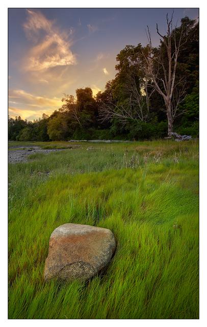 Comox Beach 2018 5 Landscapes
