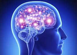 images (2) 7 Shocking Facts About brain power Told By An Exper