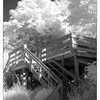 porch -infra - Infrared photography