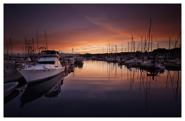 Comox Docks 2018 28 Comox Valley