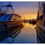 Comox Docks 2018 23 - Comox Valley