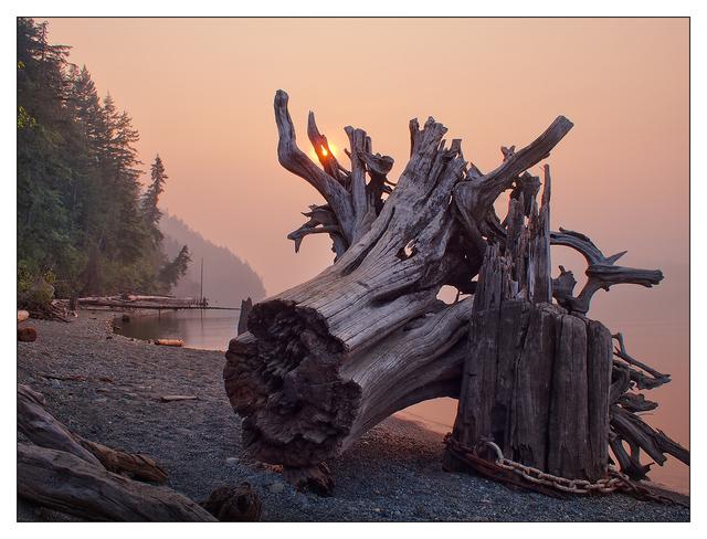 Comox Lake 2018 3 Landscapes