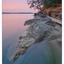 Biggs Park 2018 04c - Landscapes