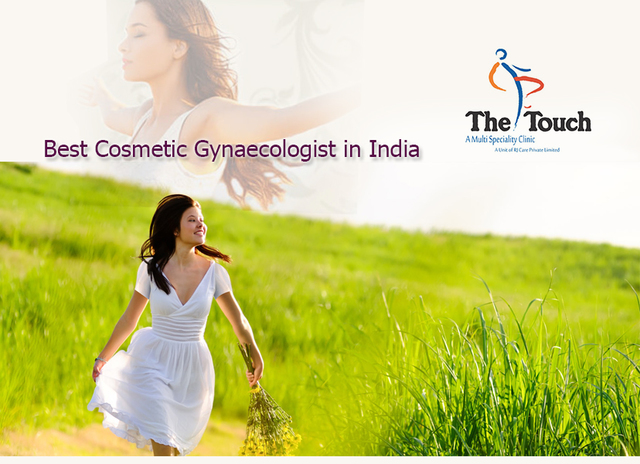 Best Cosmetic Gynaecologist in India Best Cosmetic Gynaecologis - The Touch Clinic
