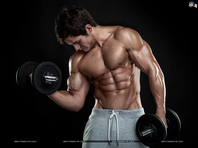 bodybuilding-186a PaltroxT