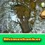 Bhimashankar 1 - all images