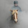 lolmetjeknol1 - foto's van website portfoli...