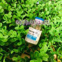 thuo-ngu-dang-nuoc-KETAMIN-213x213 Thuốc mê, thuốc ngủ dạng nước shoptinhyeu247