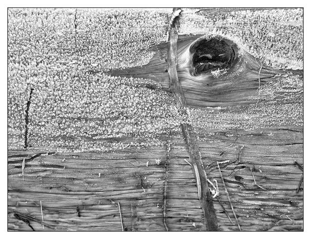 Frosty Estuary 2018 4 Black & White and Sepia