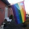 Regenboogvlag uit voor onde... - In de tuin 2019