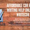 Custom CDR Report writing S... - WriteCDR