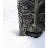 Snow Face 2019 - Comox Valley