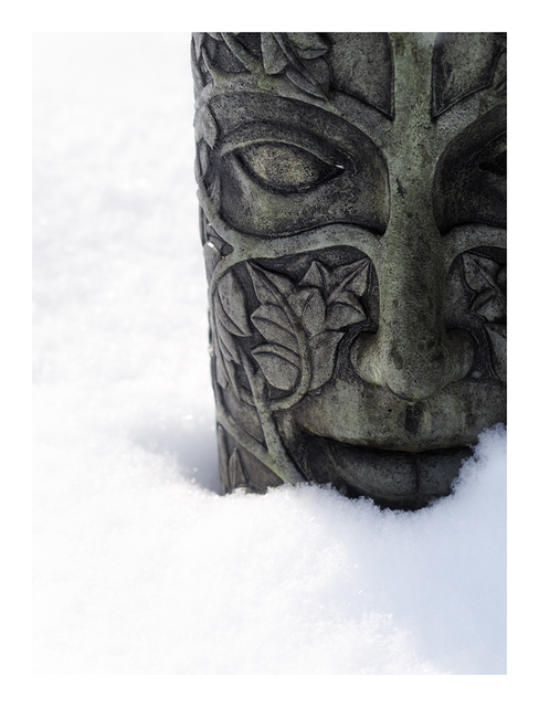 Snow Face 2019 Comox Valley