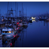 Comox Docks 2019 4 - Comox Valley