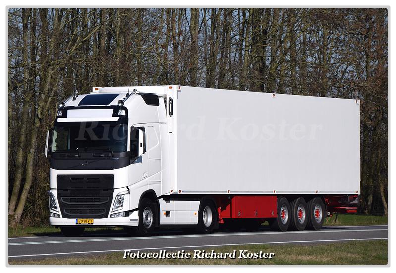 Oldenburger 70-BLV-1-BorderMaker - Richard