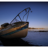 Millard Beach 2019 1 - Landscapes