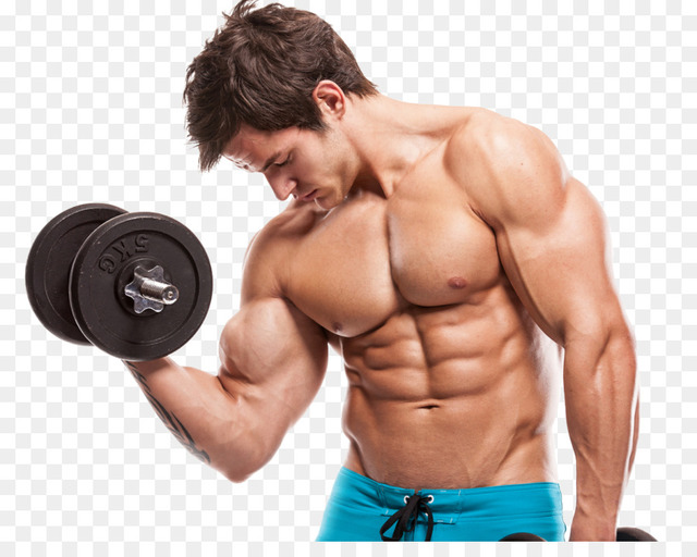 kisspng-exercise-rectus-abdominis-muscle-strength- Whate are the ingredients used in Nitro Strenght ?