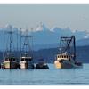 Strait of Georgia 2019 1 - Vancouver Island