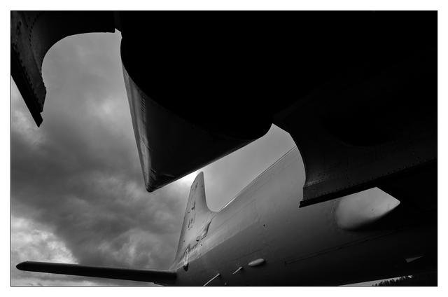 Comox Airpark 2019 2b Aviation