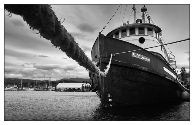 Port Alberni 2019 3 Black & White and Sepia
