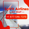1877-546-7370 Spirit Airlines© Support Number