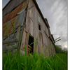 Old Barn 2019 6 - Comox Valley