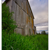 Old Barn 2019 1 - Comox Valley