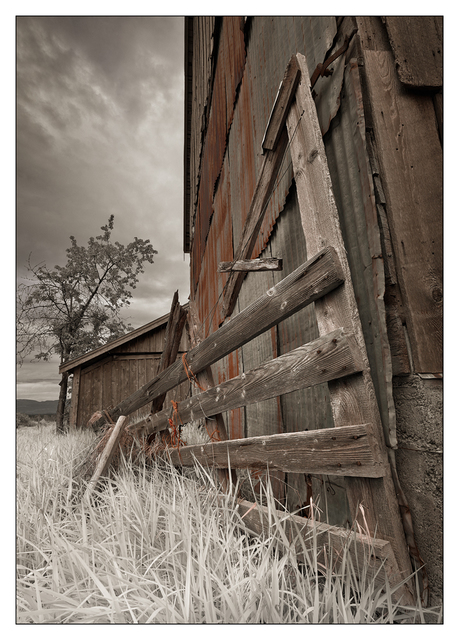 Old Barn 2019 5 Black & White and Sepia