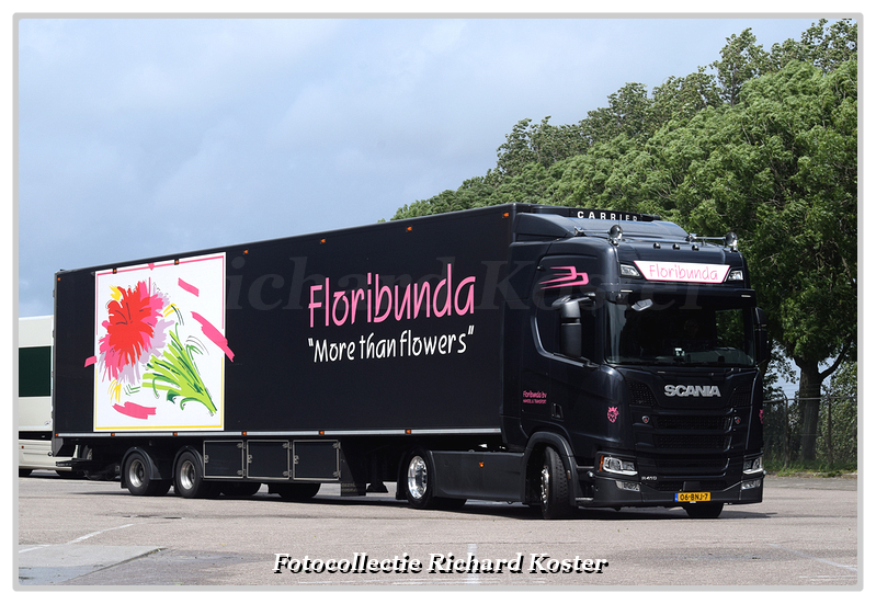 Floribunda 06-BNJ-7 (3)-BorderMaker - Richard