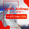 Spirit Airlines Size   Small - 1877-546-7370  Spirit Airli...