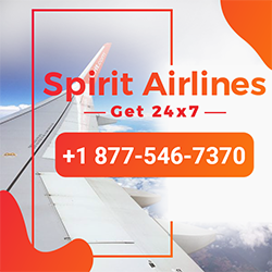 Spirit Airlines Size   Small 1877-546-7370  Spirit Airlines Customer Service