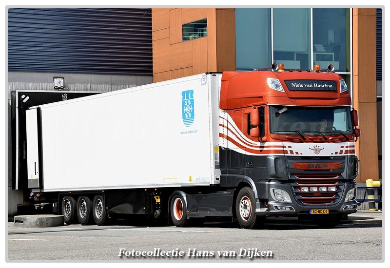 Haarlem van Niels 82-BDX-1-BorderMaker -