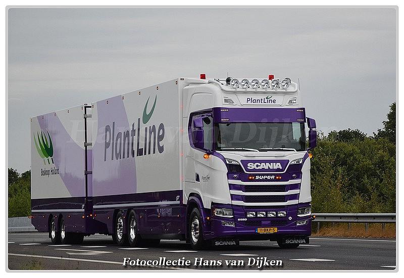 PlantLine 11-BKP-5-BorderMaker -