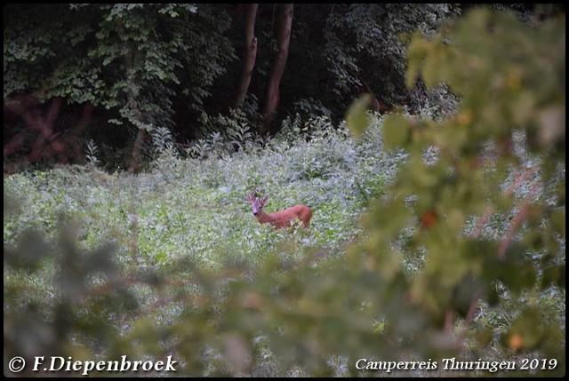 DSC 0359-BorderMaker Camper rondreis Thuringen 2019