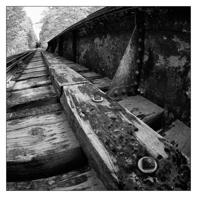 Rosewall Tracks 2019 3 Black & White and Sepia
