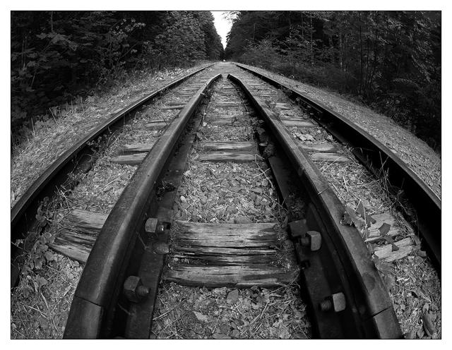 Rosewall Tracks 2019 2 Black & White and Sepia