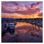 Comox Docks 2019 8c - Comox Valley